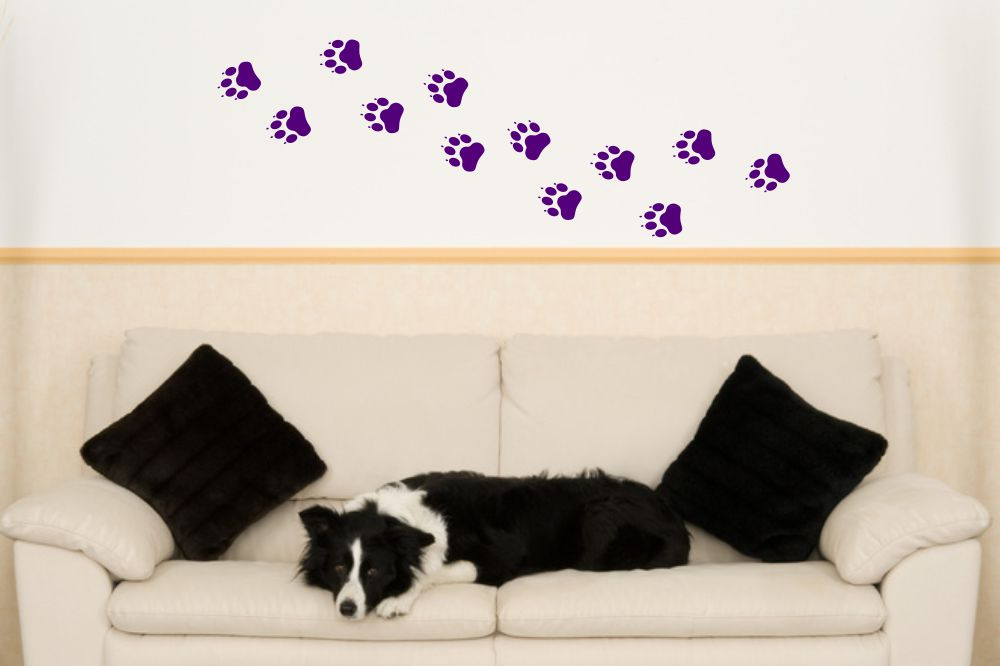 Wandtattoo Hundepfoten 12er Set Wandtattooshop24 De